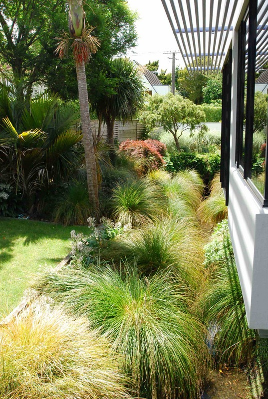 Drainage-Ditch-Transformed-12