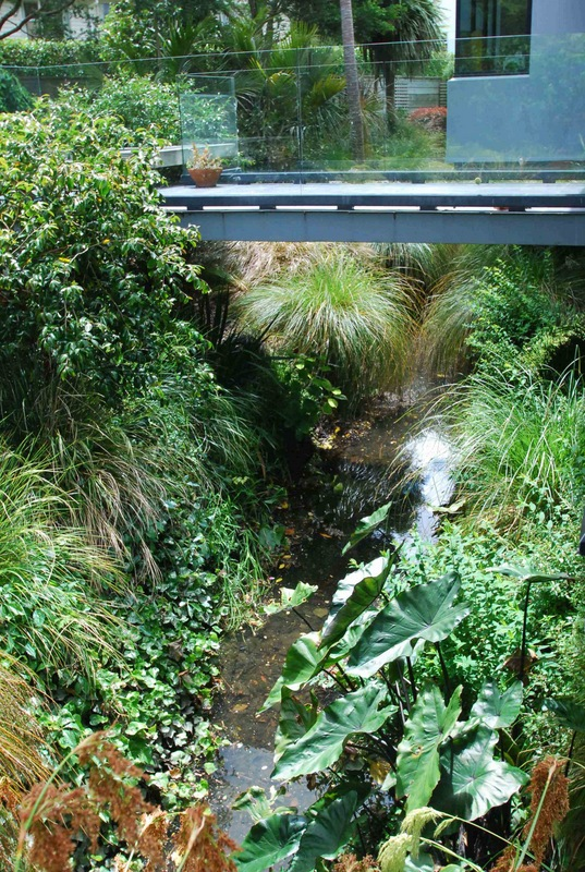 Drainage-Ditch-Transformed-4