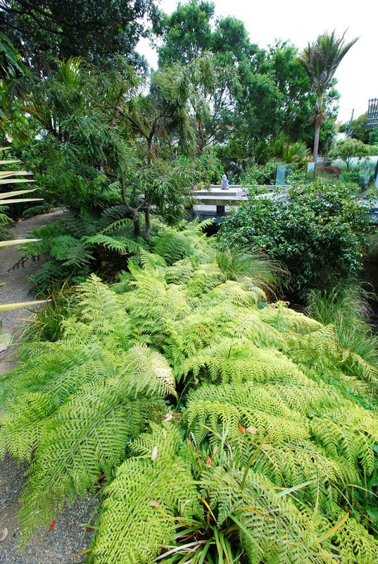Drainage-Ditch-Transformed-5
