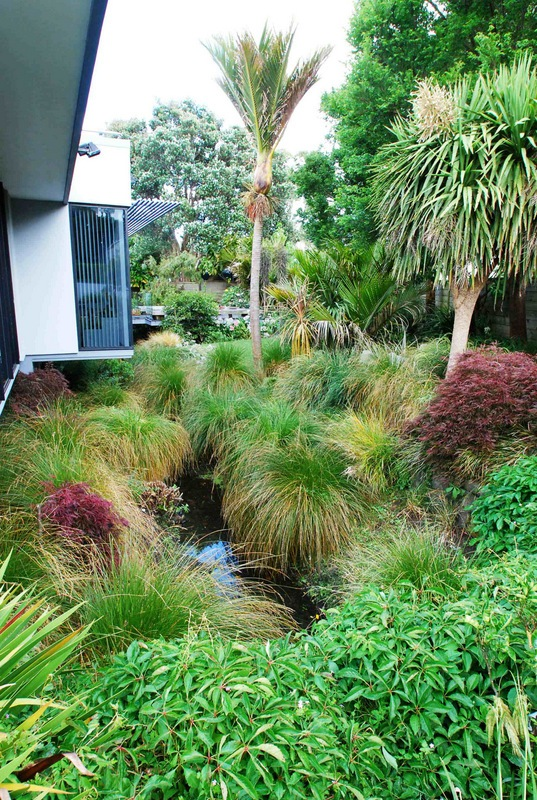 Drainage-Ditch-Transformed-9