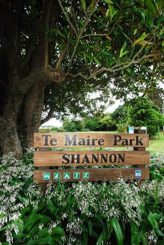 Shannon-Park-2