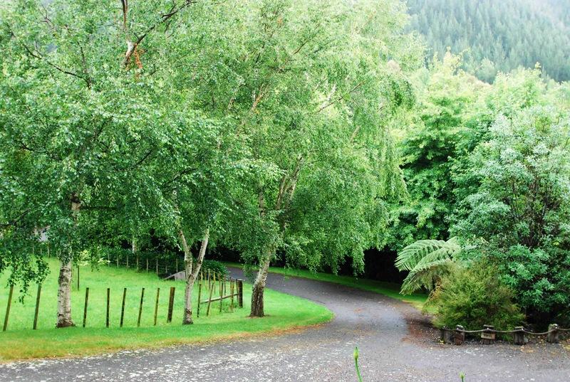 Waikanae-Woodland-Drive-12