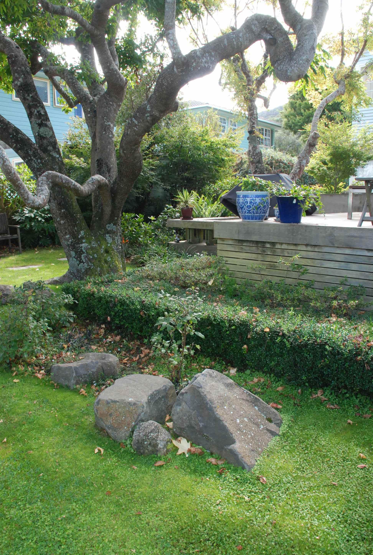 Eastbourne website pics 008 for Landscape architects wellington